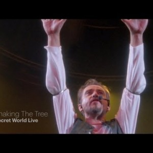 Peter Gabriel – Shaking The Tree (Secret World Live HD)